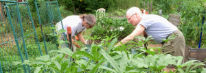 Workshop Offers Hints for Successful Gardening