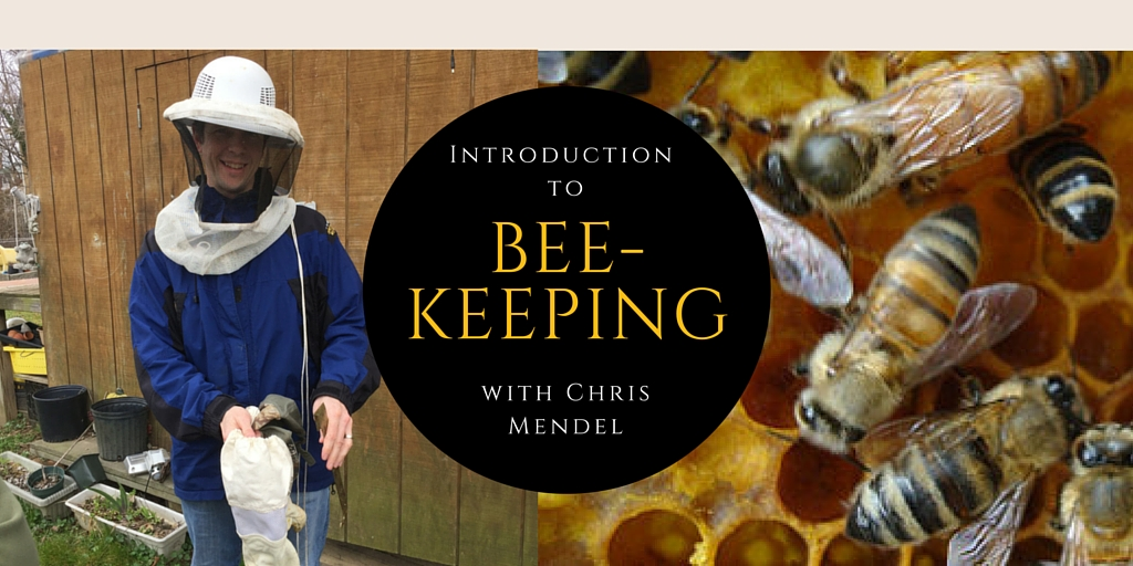 Introduction to Beekeeping with Chris Mendel
