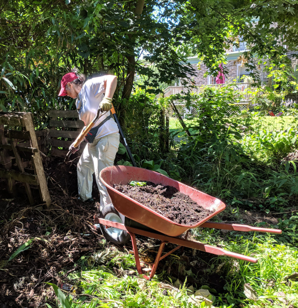 photo: person digging with shovel and wheelbarrow