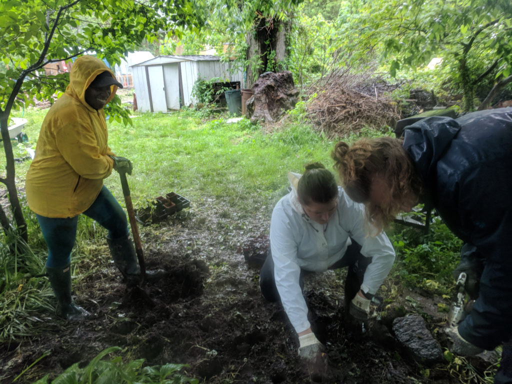 photo: three people digging in rain gear