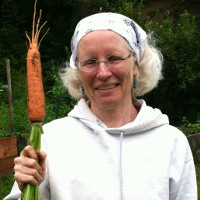 photo:woman holding carrot