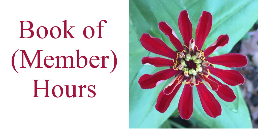 """Book of (Member) Hours"" with photo of red flower"