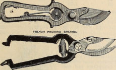 engraving: pruning shears